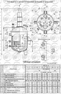 Реакторы с эллиптическими  днищем и крышкой